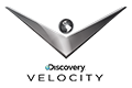 Logo Discovery Velocity