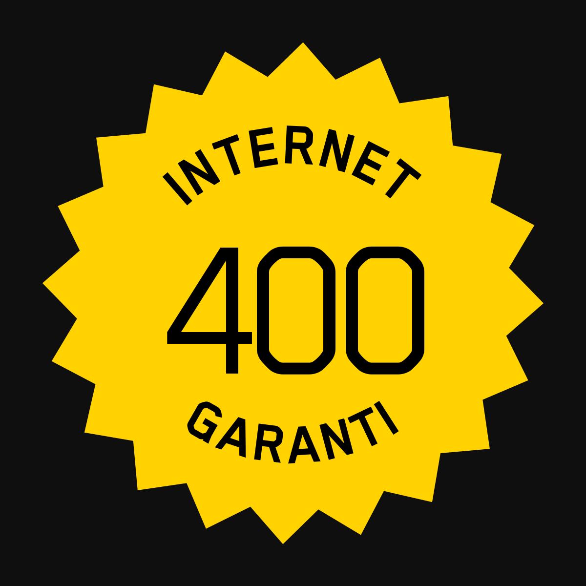 Accès Internet Garanti 400/50