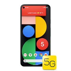 Google Pixel 5 - Subtilement sauge - 640